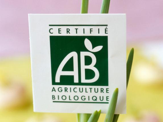 Journée agriculture biologique : donnez-nous votre avis !