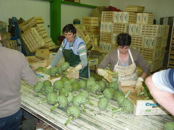Emploi : un plan pour faciliter l'embauche de saisonniers