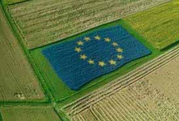 Stratégie «de la ferme à la table» : Bruxelles fixe un cap très ambitieux pour 2030
