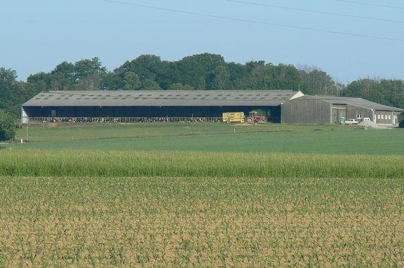Statut du fermage : concorde entre propriétaires et fermiers à la FNSEA