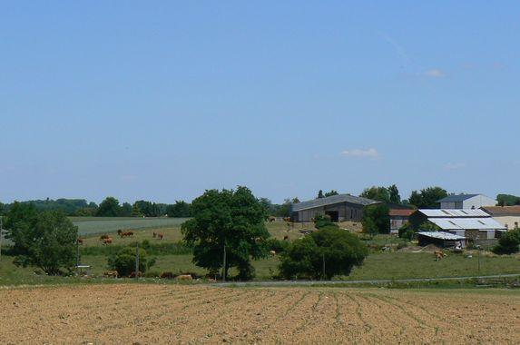 St Georges/Loire : Quelle agriculture veulent les gens dans nos campagnes ?