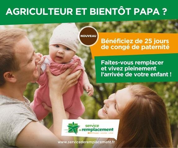 Congé paternité : 25 jours à partir du 1er juillet pour les exploitants