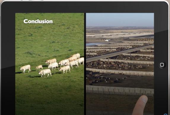 Mercosur : Emmanuel MACRON change de cap et sacrifie l'élevage bovin viande français