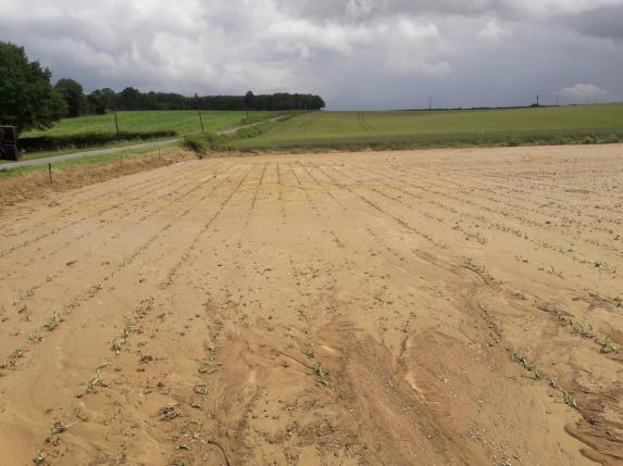 Intempéries : quelques dégâts en Anjou