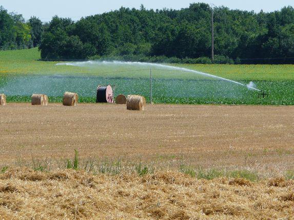 IRRIGATION : évaluer les besoins en matière de développement de l'irrigation
