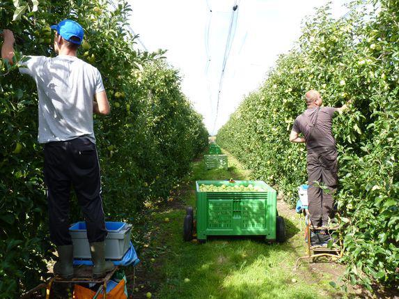 Compétitivité : quel avenir pour les employeurs agricoles ?