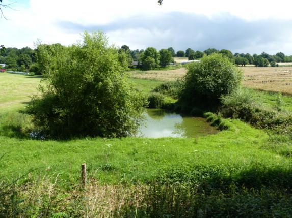 Phytosanitaires : règles pour protéger les points d'eau