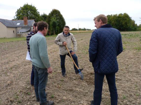 Couverts d'interculture : visite terrain avec la DDT