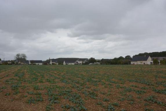 Phytosanitaires : participer à la consultation du public