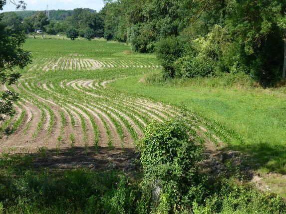 Environnement : Hulot avance sans les agriculteurs