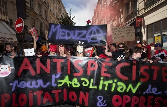 Un boucher parisien agressé par des militants antispécistes