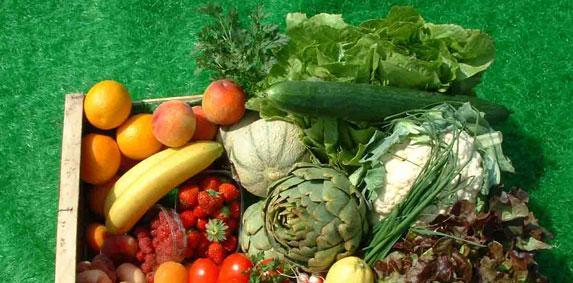 Etude - Les prix des produits agricoles à la production quasi-stables en mars