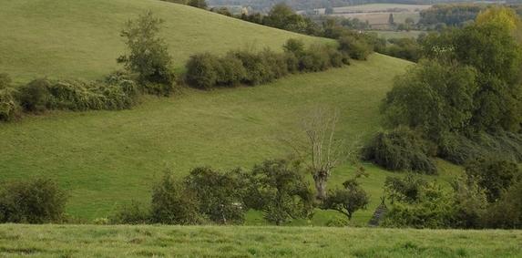 Pays de la Loire - Dossiers MAEC: l'instruction avance